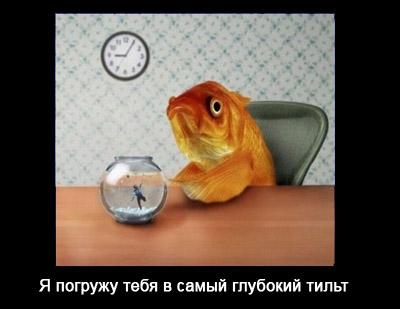 3betting aquariums joelmir betting hospital compare