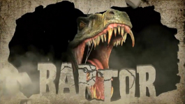 "Heads Up cash ликфайндер от David-а ""Raptor"" Benefield-а!"