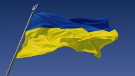 Украинцы на WSOP 2013