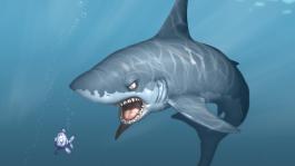 Обзор игры Покер Shark ВКонтакте