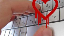 Смени пароль на Skrill (немного об уязвимости Heartbleed)