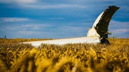 Мнение покерных про о крушении самолета на Украине