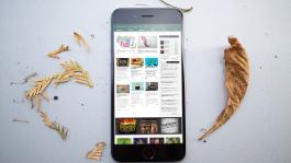 Выиграй iPhone 6 во фриролле William Hill от Покерофф
