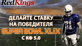 КФ 5.0 на финальный матч Super Bowl XLIX на BetRedKings