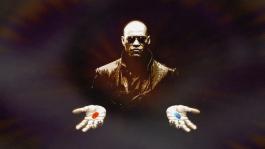 Как новичку выбрать покерную дисциплину?