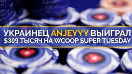 Anjeyyy занёс $309,744 в турнире WCOOP