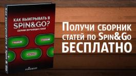 Не упусти возможность бесплатно получить самоучитель по Spin&Go