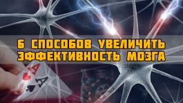 6 способов достичь максимальной эффективности мозга для игры в покер