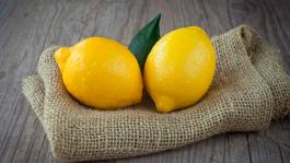 Alohahaloha стала рейкомесом и рассказала об участии в рейк-гонке «Два лимона»